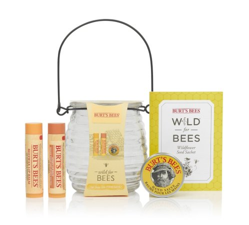 burts-bees-gift-set